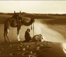 Desert_Salaath